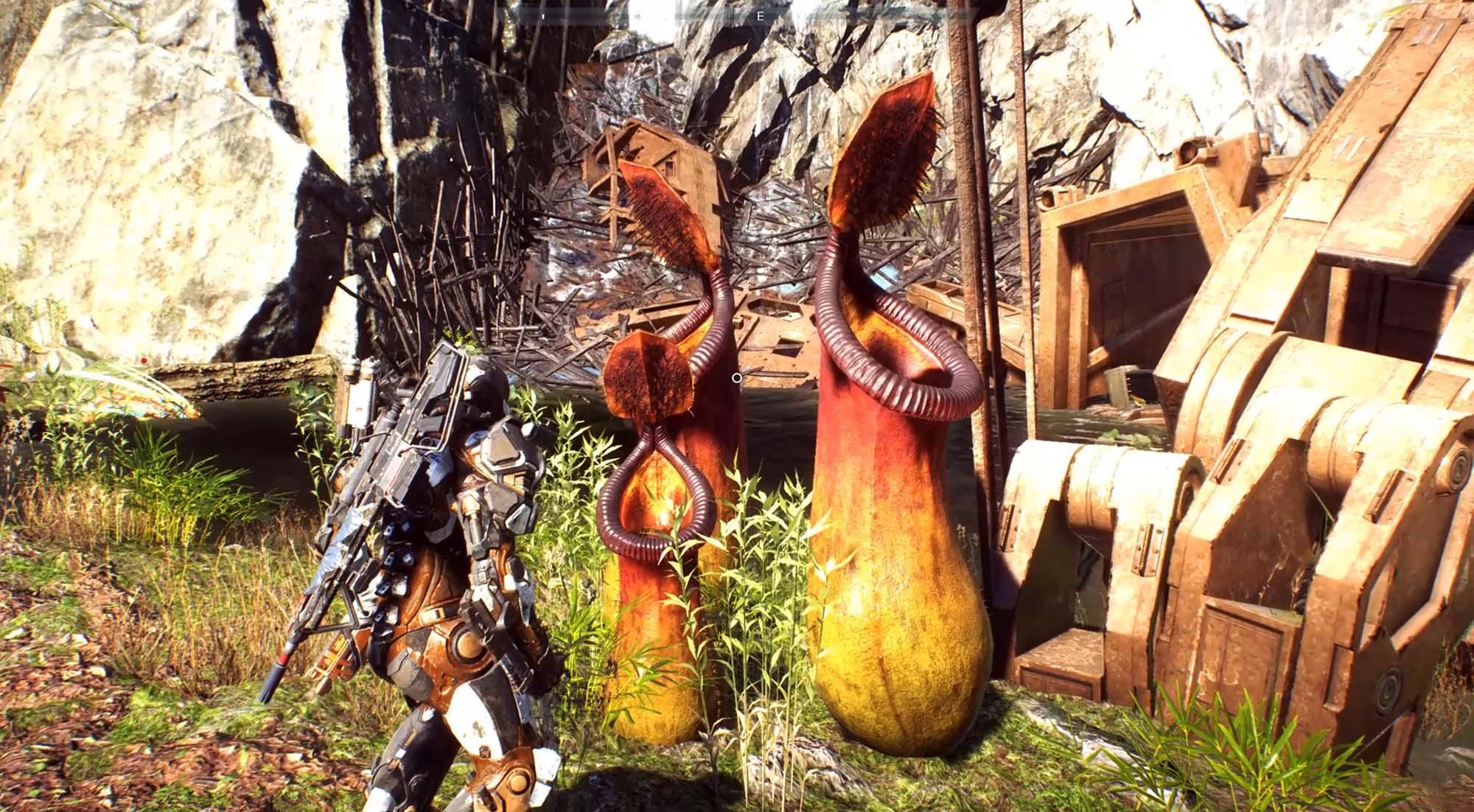 Anthemの世界に存在する植物の画像