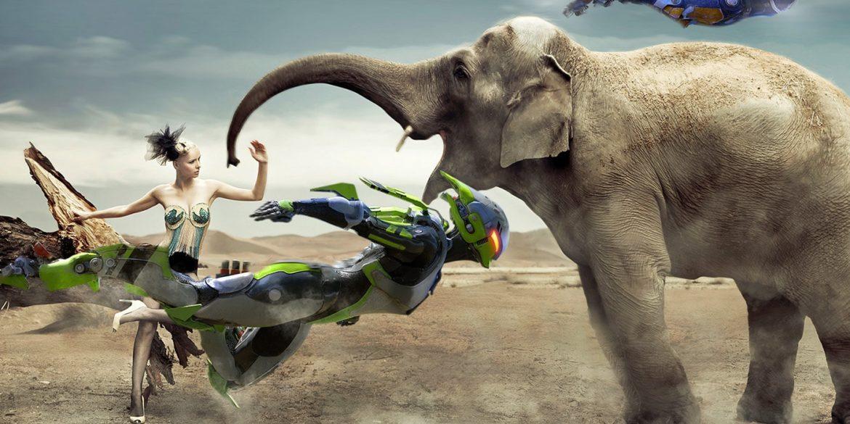 記事「Anthemの生態系を愛でる」のアイキャッチ画像