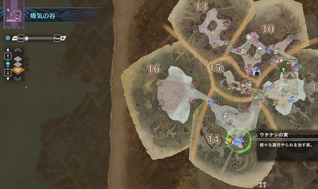 モンスターハンターワールドの「瘴気の谷」の地図