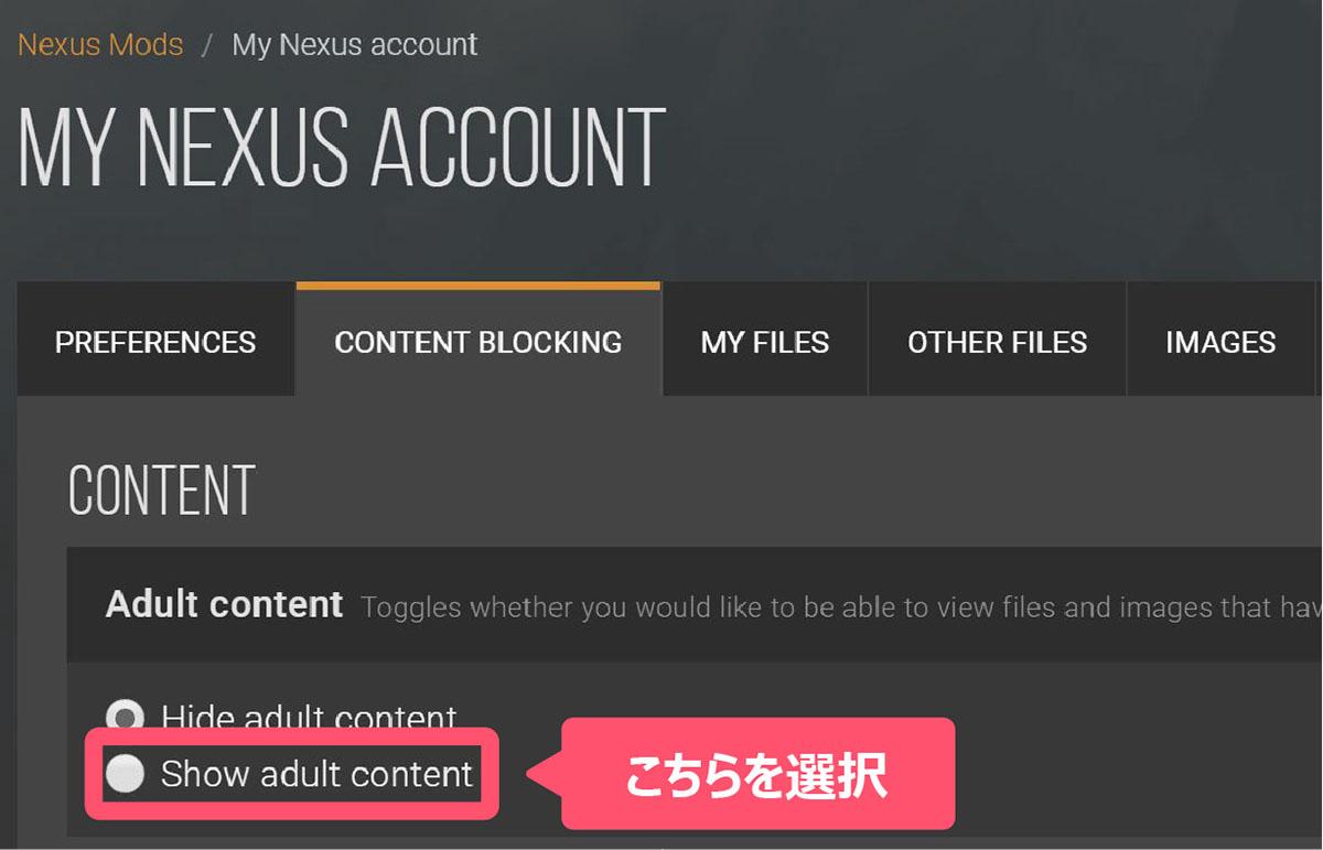 nexus modsの設定を変更するイメージ画像-3