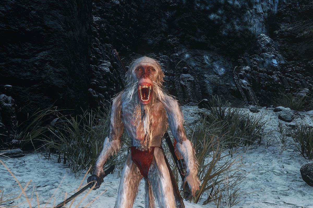 白い猿のイメージ画像